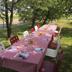 Impression Tisch im Garten